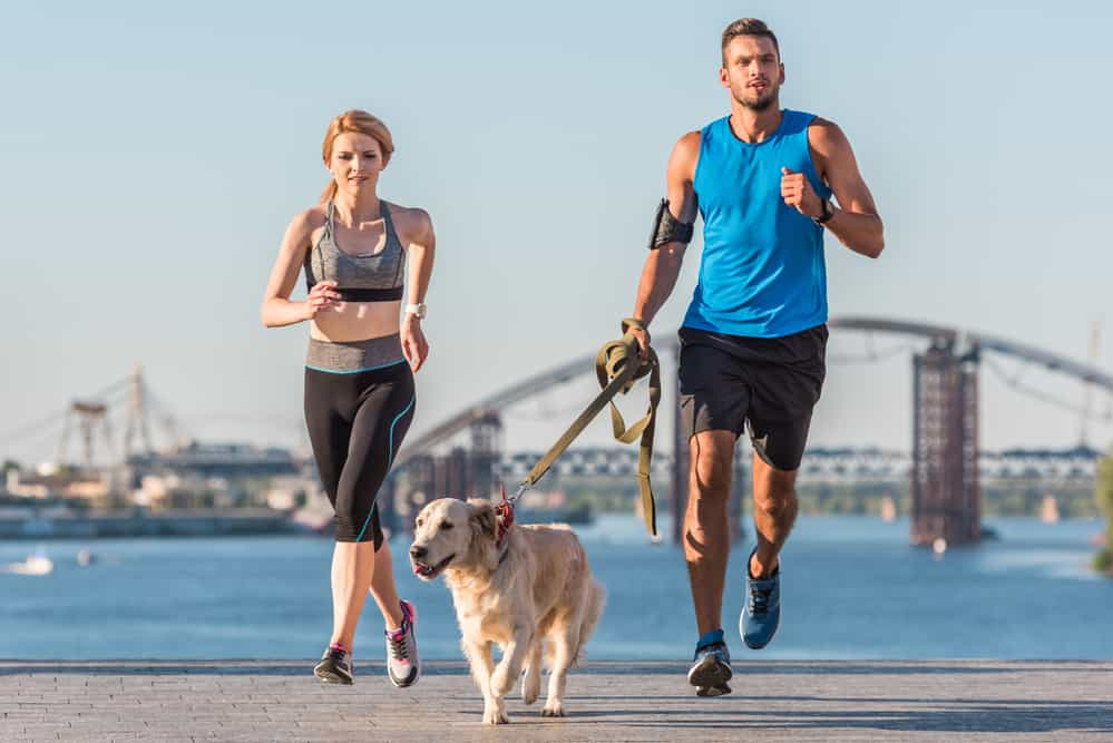 couple running with dog in city